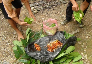Lao Lunch on the Banks of the Nam Song
